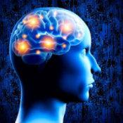 mind_175